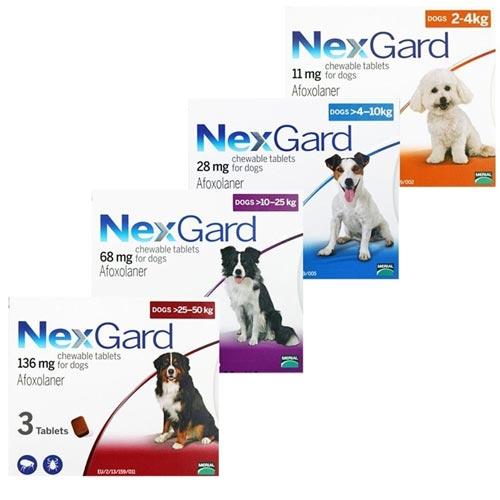 Chó bị bệnh viêm da bạn nên sử dụng thuốc Nexgrad để trị nội ngoại ký sinh trùng