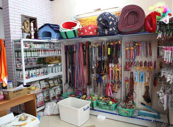 Danh sách những địa chỉ bán phụ kiện chó mèo uy tín, có tiếng tại khu vực Cầu Giấy Hà Nội