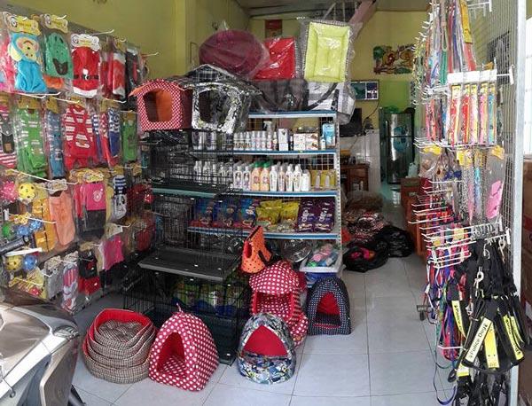 Ở Đà Nẵng có rất nhiều các shop bán phụ kiện chó mèo, rẻ, hàng đẹp