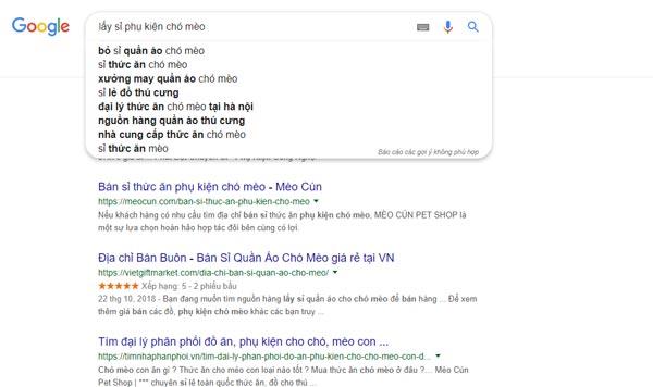 Bạn có thể dễ dàng tìm thấy đơn vị bán sỉ phụ kiện chó mèo qua Google.com.vn