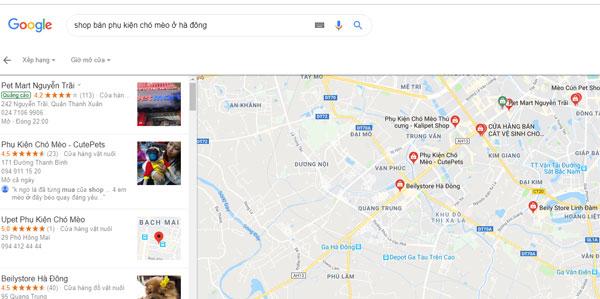 Bạn có thể dễ dàng tìm kiếm thấy các shop bán phụ kiện dành cho chó mèo ở khu vực Hà Đông Thông qua Google.com