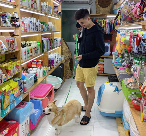 Ở Hà Nội bạn có thể qua khu phố Trường Chinh hoặc các cửa hàng phụ kiện thú cưng bên dưới